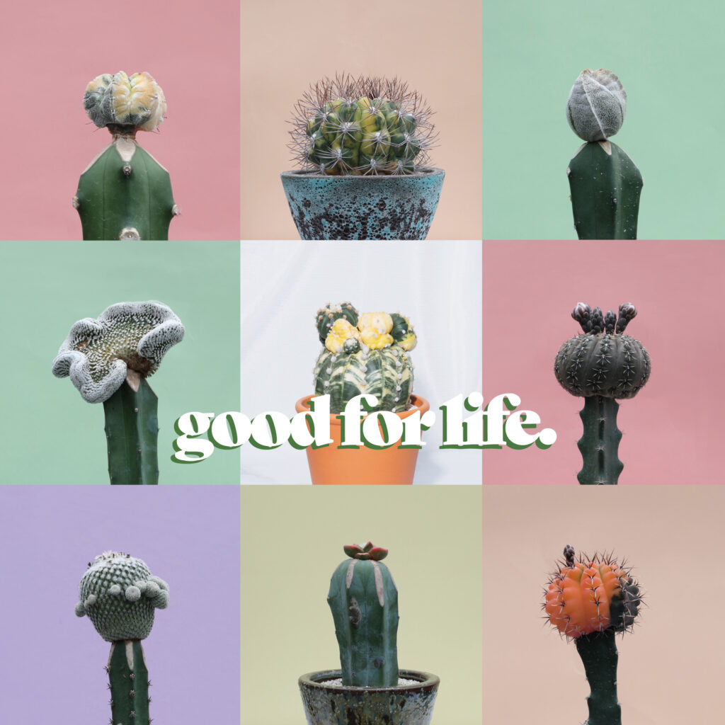 GOOD FOR LIFE -サボテンフェア-